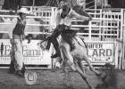 Round-Up Club rodeo another success